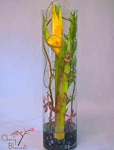 Heliconia Under Glass