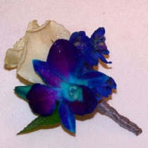 Rose Boutonniere BF-75