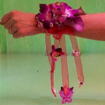 Pink w/ Ribbons BF-92