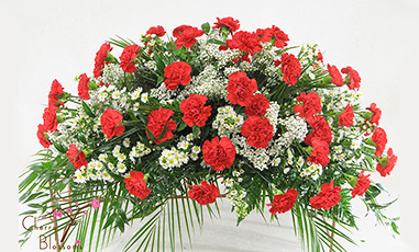 Red Carnations Casket Spray-Half Cover Shown Avail in Full Cover