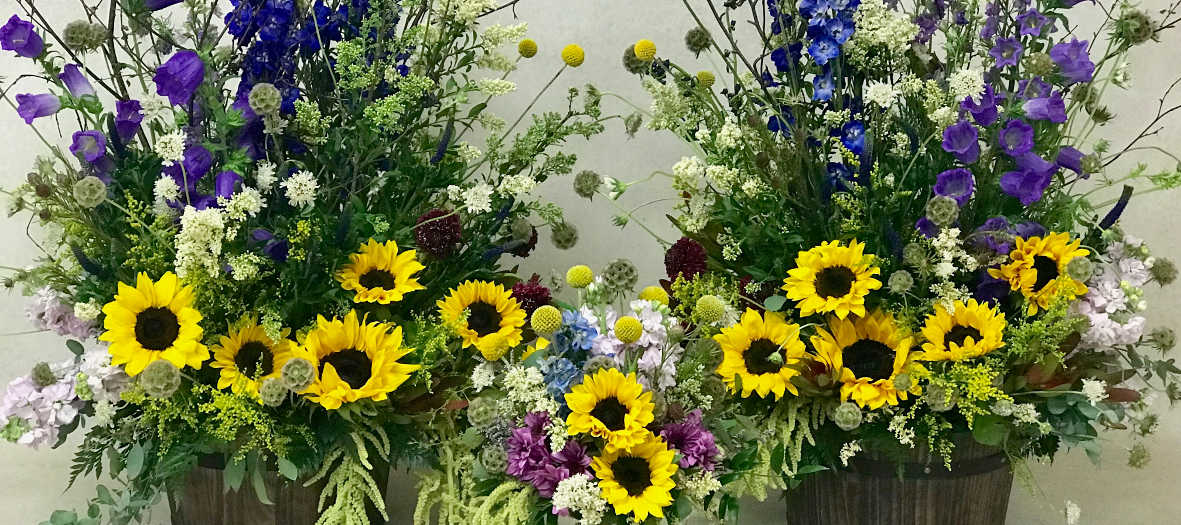 Local florist cherry blossoms florist westminster co broomfield co local florist cherry blossoms florist westminster co broomfield co flower delivery mightylinksfo
