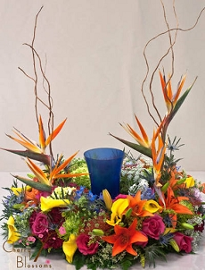 Tropical Inspiration Cremation Wreath