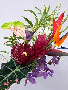 Custom Tropical Bouquet