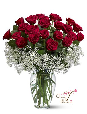 Field of Roses (2 Dozen)